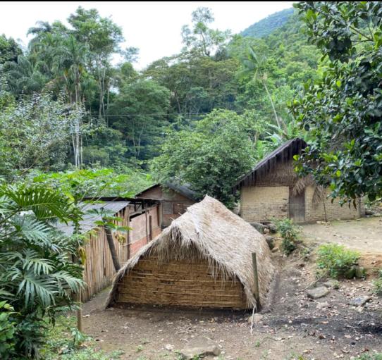 Aldeia Indígena Taximirim Guarani M'Biá